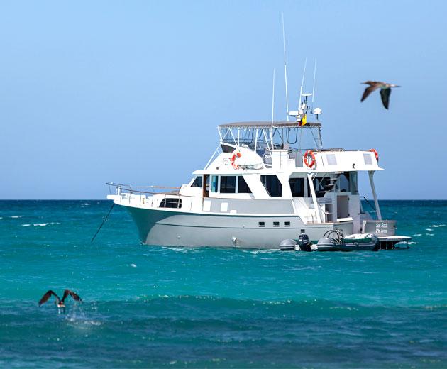 Sea Finch Yacht