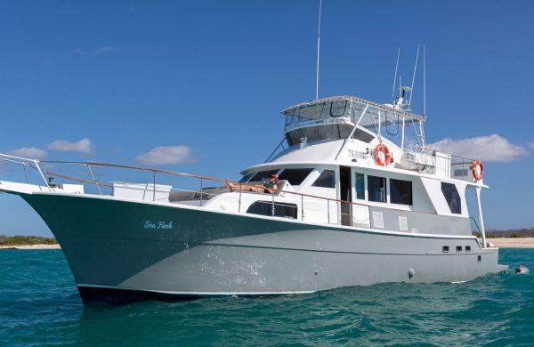 Seafinch Yacht